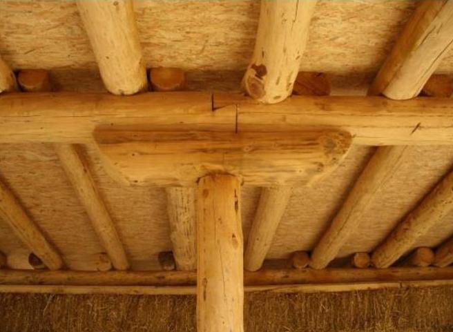 La fusta. Un recurs forestal per a la construcció.