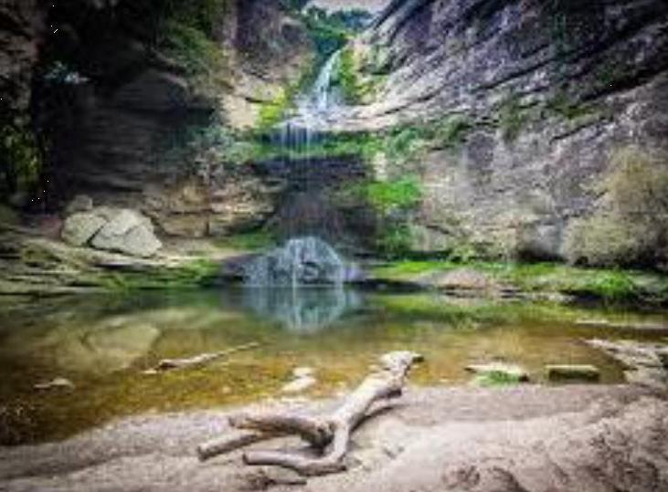 Processos verds de gestió d'aigües (aprofitament, tractament i depuració natural)