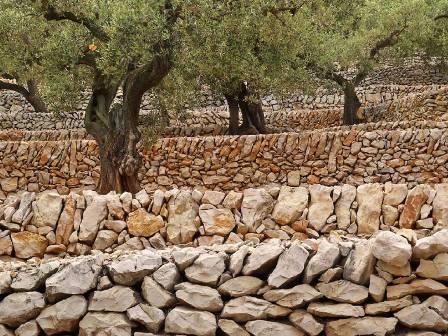 Construir amb pedra seca