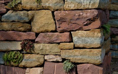 La tècnica constructiva de la Pedra Seca (8a Edició)