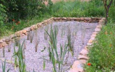 Jornada Tècnica: Processos verds de gestió d'aigües (aprofitament, tractament i depuració natural)