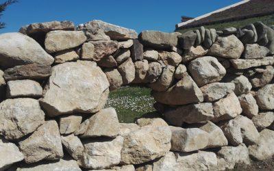 Taller de Pedra Seca al Montseny (9a edició)