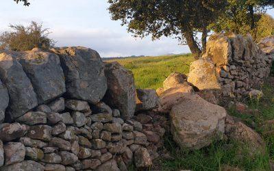 Taller de Pedra Seca al Montseny (2a edició)